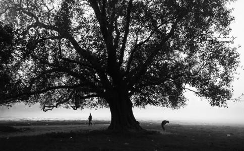 印度摄影师Kanishka Mukherji 作品