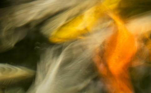 William Neill 风光摄影作品欣赏(二)