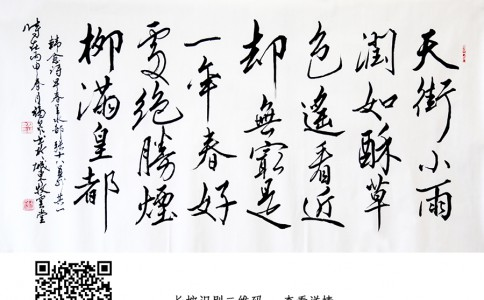 沙龙拍讯   书法之秀,唐诗之美