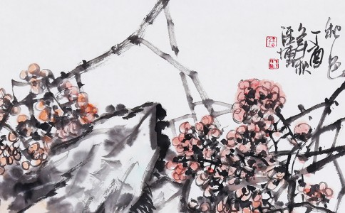 沙龙拍讯 | 花香满溢 草木知春