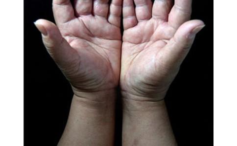 劳动人民的双手